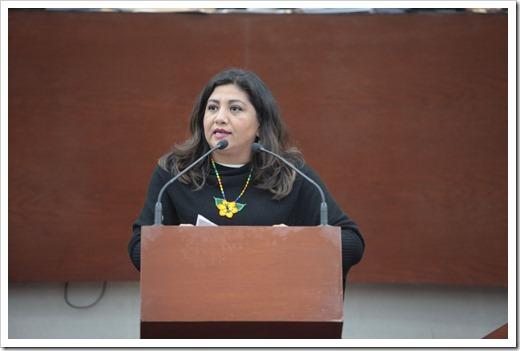 Dip. Marite Hernández Correa