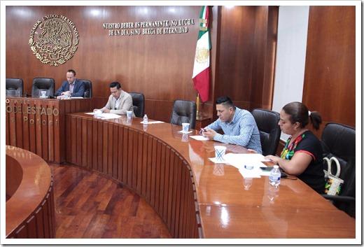 Comisión de Seguridad Pública, Prevención y Reinserción Social