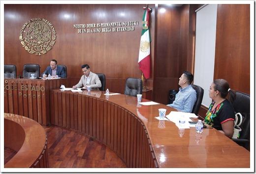 Comisión de Seguridad Pública, Prevención y Reinserción Social (1)