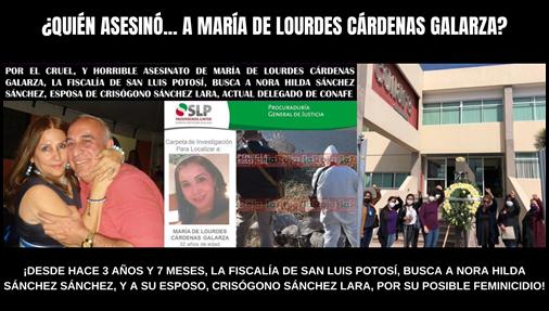 ¿QUIÉN ASESINÓ A MARÍA DE LOURDES CÁRDENAS GALARZA?