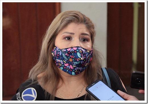 Dip. Angélica Mendoza Camacho (2)